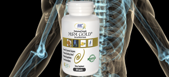 msm gold systemic enzyme